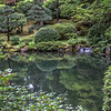 Reflecting Pond - Portland Japanese Garden, OR