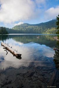 """""""Mowich Lake"""""""