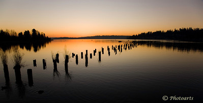 """The Lost Pier"" Kirkland, WA #73121100  © Payam Nashery - Photoarts"