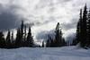 Moody Sky at Mount Rainier National Park