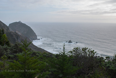 Pacifica-Devils Slide -0070-140327