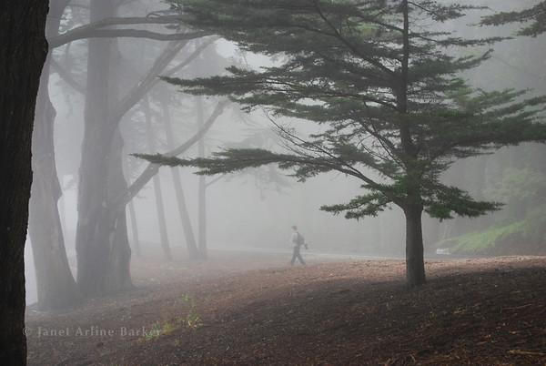Pacifica-Summer Fog on Skyline