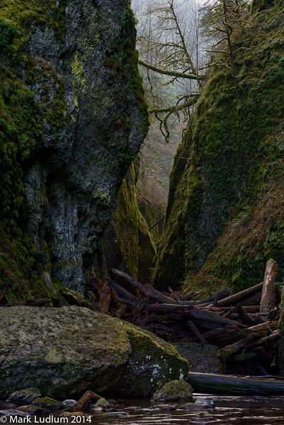 Oneonta Canyon 01-2014