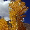 Colours in early Fall...the fabled valleys of Hunza resemble pictures from a fairytale book