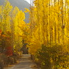 Fall in Hunza - a daydreamers paradise