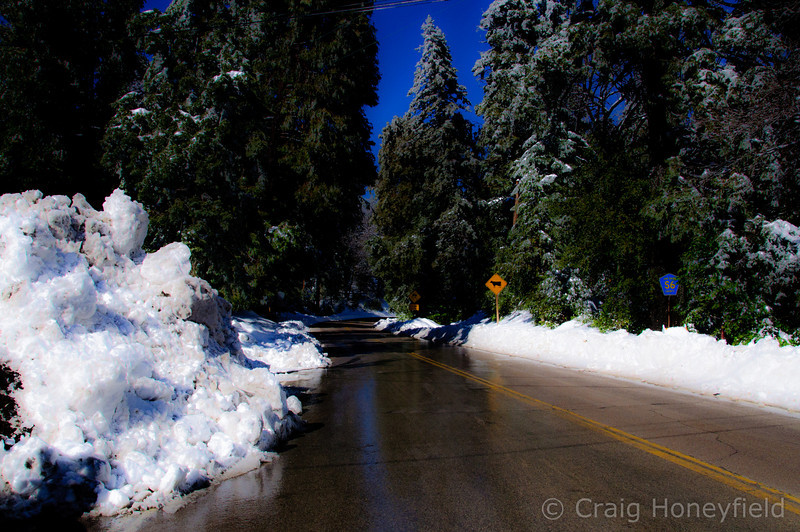 Top of Palomar Mountain where the snow was piled up from plowing the roads