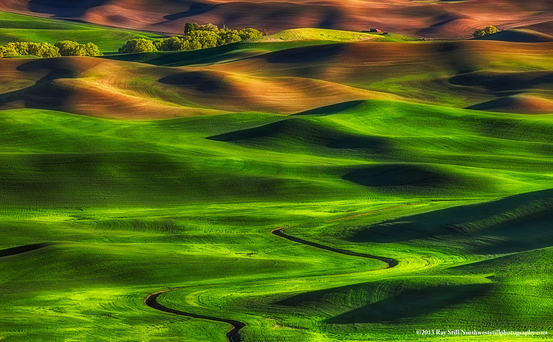 Palouse Curves 5-14-13