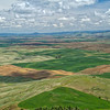 The Palouse from on top of Steptoe Butte.