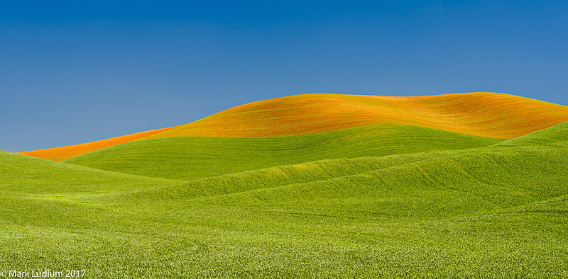 Palouse Scapes 06-2017