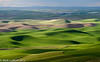 Palouse Steptoe Butte Overlook 06-2012