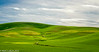 Palouse Valley 05-2014
