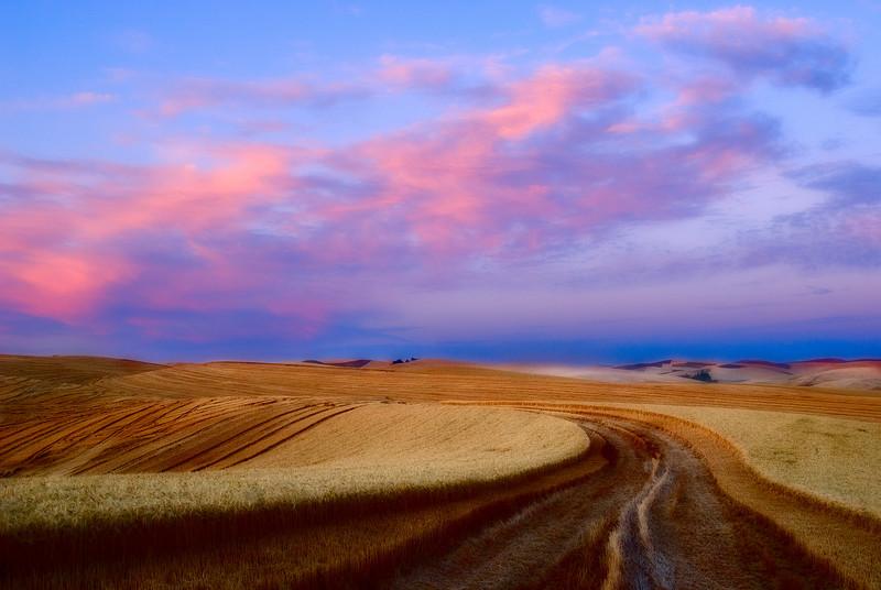 Palouse Road Sunset