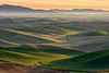 05-2013 Palouse Sunrise 2