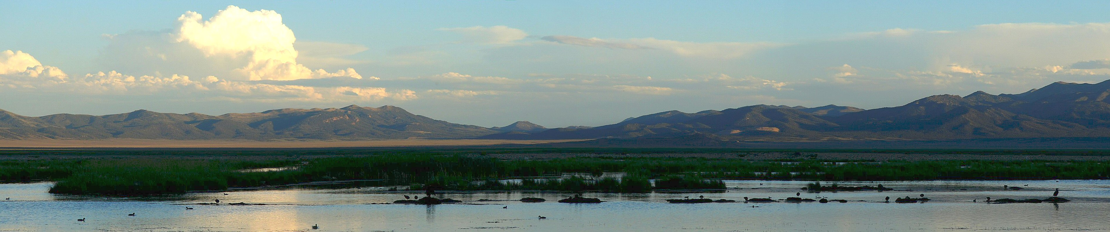 Evening at the Ruby Lake Nat'l Wildlife Refuge, Nevada