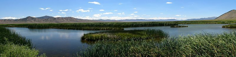 Ruby Lake National Wildlife Refuge on the east side of the Ruby Mountains, northeast Nevada