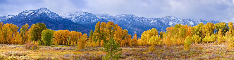 Panorama (Size 20956 x 5425,merged x7), Wyoming, Grand Teton National Park, Teton Village, Fall Color, Landscape,  怀俄明, 大提顿国家公园, 秋色,全景摄影