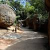 "A Shrek moment ... ""Nice Boulder"" .... at Perth Zoo, Western Australia."