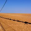 Mud Flats near Derby, the Gateway to the Kimberley. Far North Western Australia.