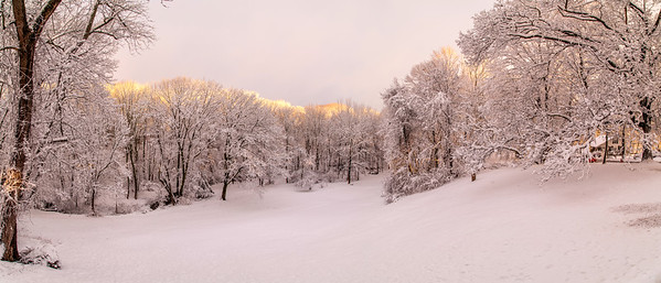 2-5-2016 6 Panel Pano Fresh Snow at 46 Rosemary