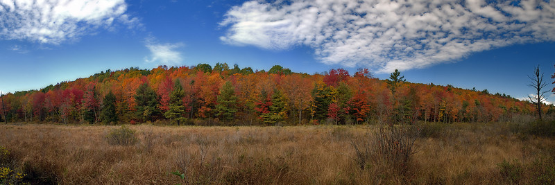 Autumn Pano 1 Rt 123 Stoddard