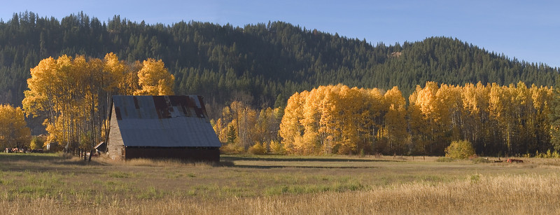 Fall colors near Leavenworth, Wash.