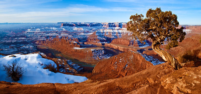 pan14: early winter morning, Dead Horse Point State Park, Utah