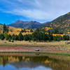 Lockett Meadow Fall Colors