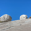 Trees & Erratics - Yosemite National Park - California