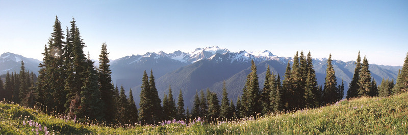 Mount Olympus, Olympic National Park