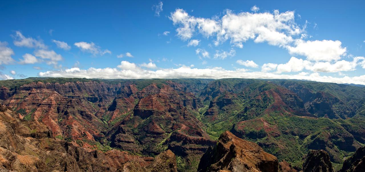 Waimea Canyon Kauai from lookout