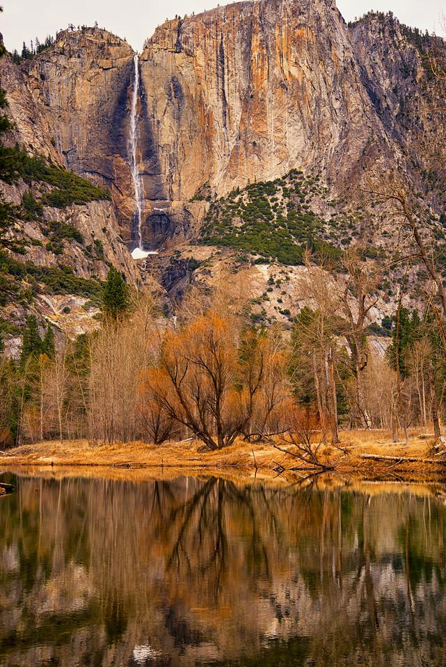 Yosemite Falls and Winter foliage