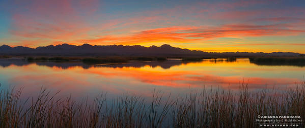 Hart Mine Marsh Sunrise