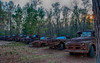 """The pallet against the Ford (third one in) reads, """"May they rust in peace""""<br /> <br /> Al says the place is kind of a local snapshit attractant.<br /> <br /> Around Crawfordsville, FL, south of Tallahassee"""