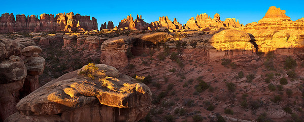 pan04: First light on the Needles, Devil's Kitchen area, Canyonlands National Park