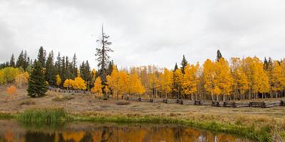 Serene Colorado Pond In Autumn