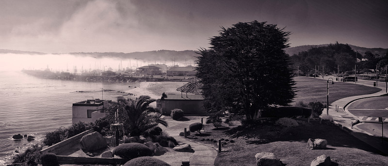 Monterey Bay California B & W