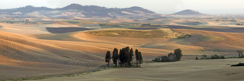 Palouse hills. Washington-Idaho border