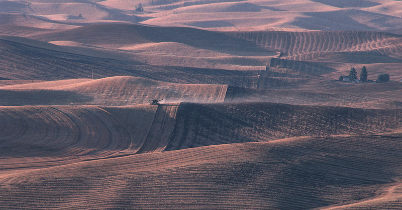 After the wheat harvest, from Steptoe Butte (the Palouse)