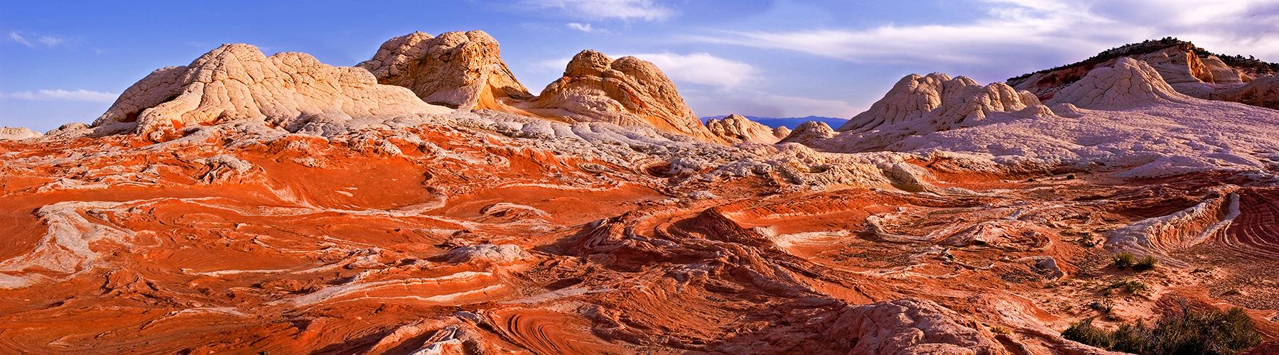 pan17: The White Pocket, Vermilion Cliffs National Monument, Arizona