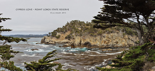 Cypress Cove - Point Lobos State Reserve - California - 2013 5 image panorama, stitched in PTGui, approx 90 deg field of view. f13 1/125 ISO 100