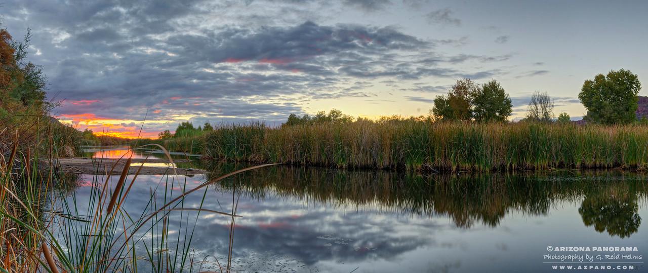 Salt River Reeds