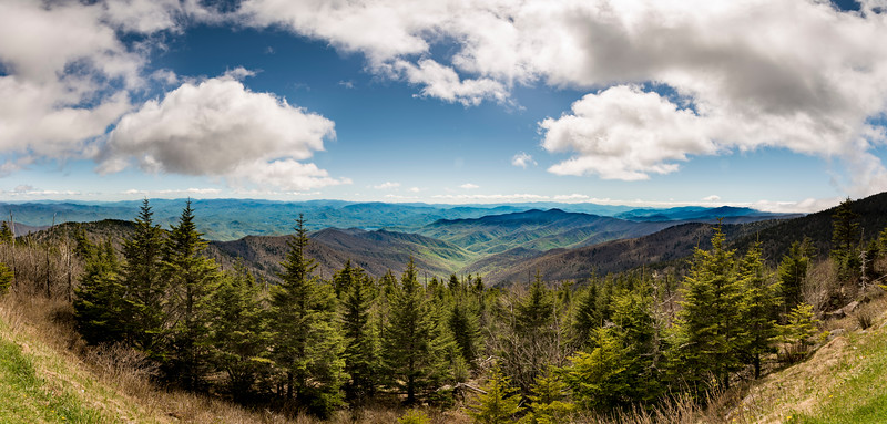 _ASP9574 Clingmans Dome South Pano
