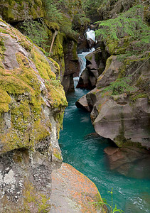 Glacier National Park, Montana  Avalanche Creek