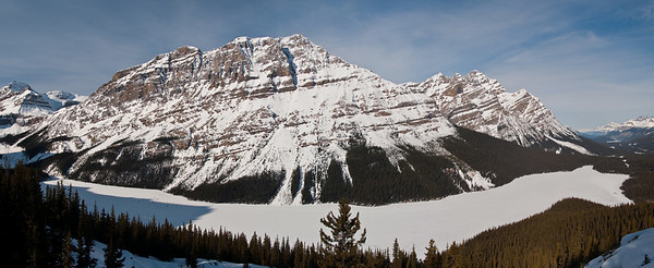 Peyto Lake, March