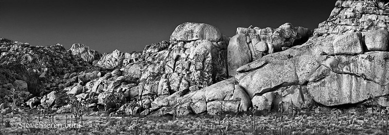 Achilles' heel <br /> Joshua tree National Park