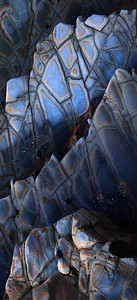 Shale Strata Vertical Panoramic Palos Verdes Art
