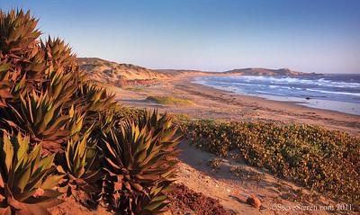 Baja California Beach Panorama