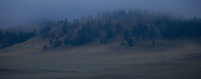 Misty Bluff
