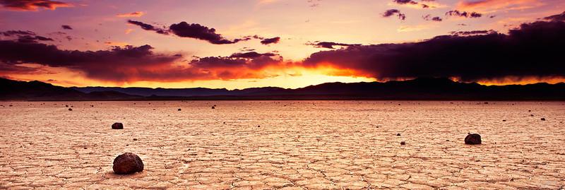 Desert Loner