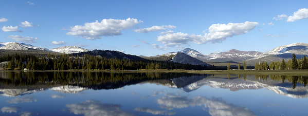 Tuolumne Meadows Panorama